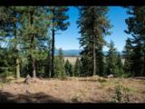 5603 Appaloosa Trail - Photo 1