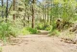3301 Ditch Creek Road - Photo 47