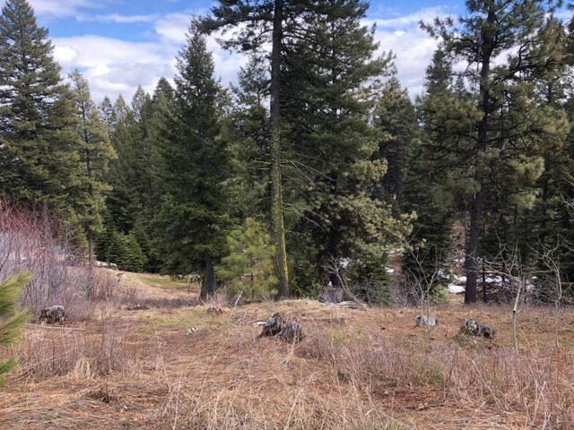 18 Clear Water Court, Donnelly, ID 83638 (MLS #526799) :: Juniper Realty Group