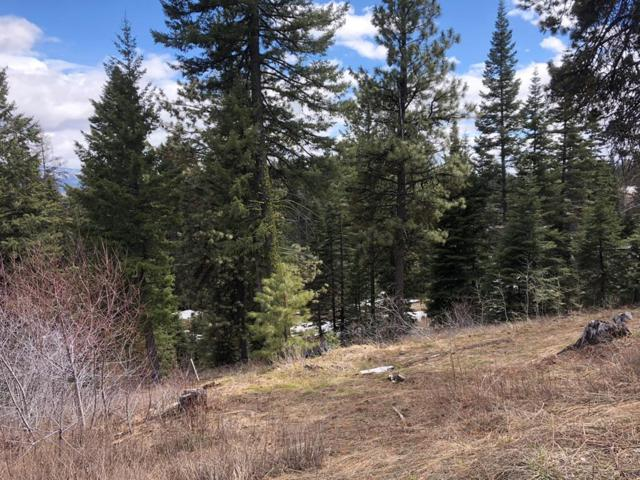 8 Clear Water Court, Donnelly, ID 83638 (MLS #526800) :: Juniper Realty Group