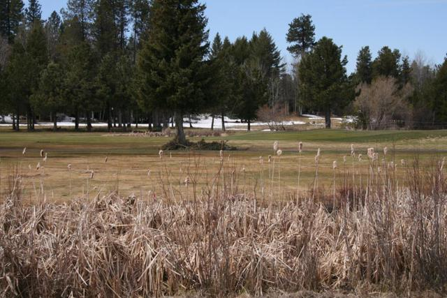 Lot 67 Brundage View Court, McCall, ID 83638 (MLS #526828) :: Juniper Realty Group