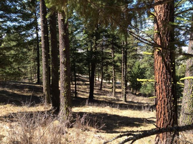TBD Finlandia Road, Donnelly, ID 83615 (MLS #526852) :: Juniper Realty Group