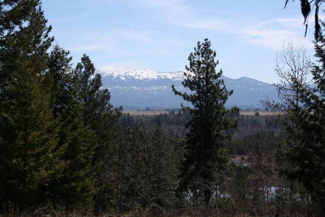 Lot 8 Blackhawk Lake Drive, McCall, ID 83638 (MLS #526858) :: Juniper Realty Group