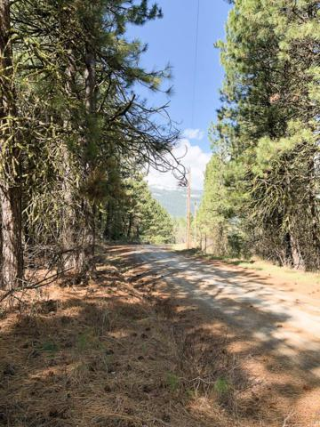 19 Meadow View Drive, Cascade, ID 83611 (MLS #526892) :: Juniper Realty Group
