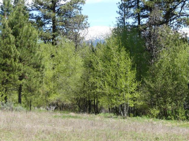 TBD Columbine Drive, New Meadows, ID 83654 (MLS #526985) :: Juniper Realty Group