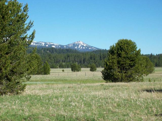 TBD Herrick Lane, Cascade, ID 83611 (MLS #526999) :: Boise River Realty