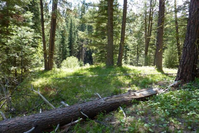 62 Panorama Drive, Cascade, ID 83611 (MLS #527093) :: Juniper Realty Group