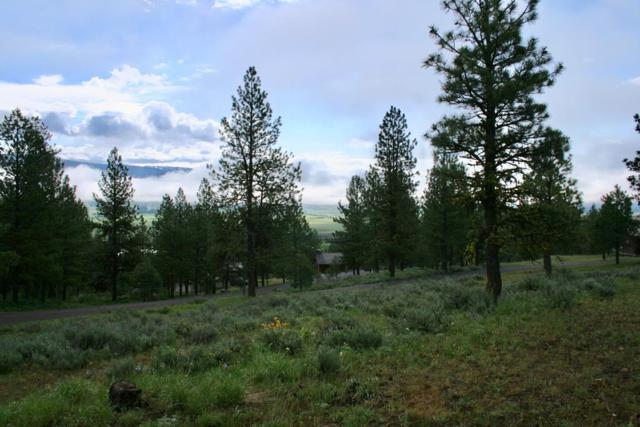 Lot 39 Baneberry Drive, New Meadows, ID 83654 (MLS #527160) :: Juniper Realty Group