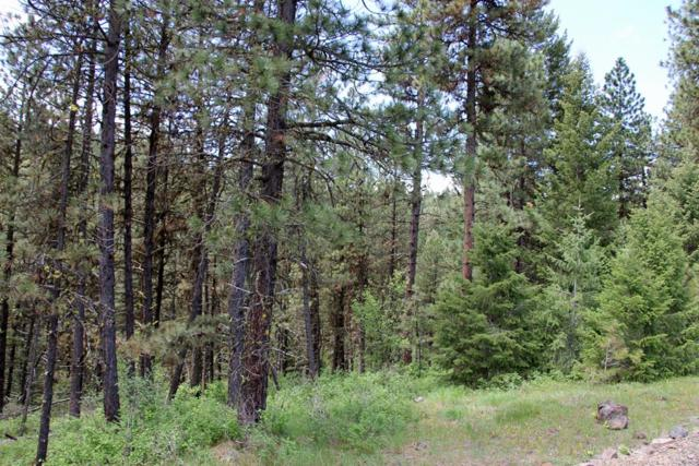 00 Yampa Court, New Meadows, ID 83654 (MLS #527238) :: Juniper Realty Group