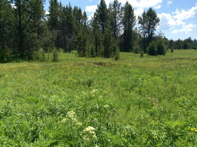 27 Grand Fir Drive, Donnelly, ID 83615 (MLS #527301) :: Juniper Realty Group