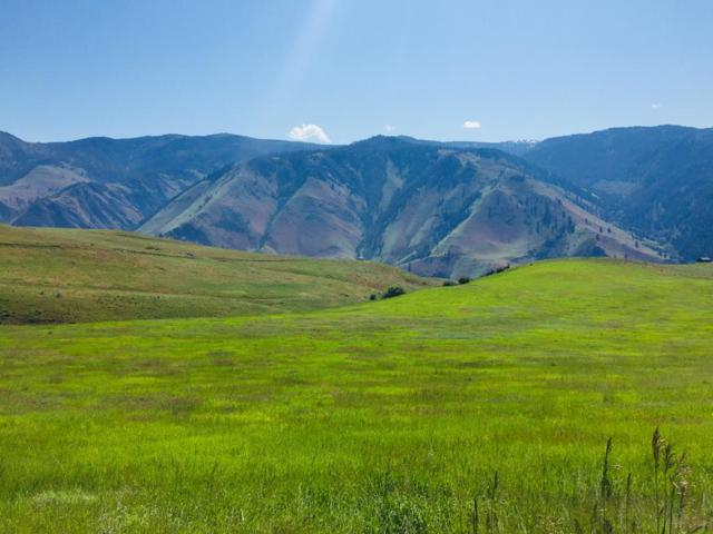 Lot 31 Whitewater Wilderness Drive, Pollock, ID 83547 (MLS #527307) :: Juniper Realty Group