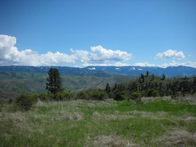 Lot 50 Shuck Creek Road, White Bird, ID 83554 (MLS #527310) :: Juniper Realty Group