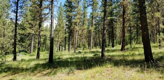 Lot #22 Kimberland Drive, New Meadows, ID 83654 (MLS #527344) :: Juniper Realty Group