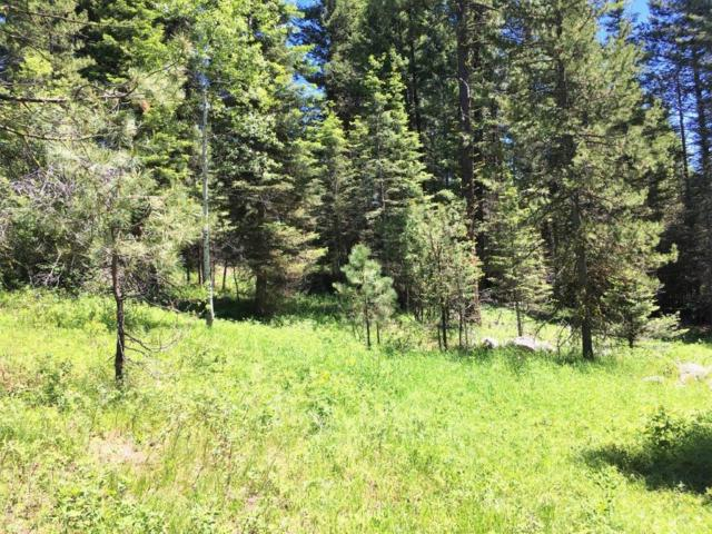 TBD Clements Street, McCall, ID 83638 (MLS #527369) :: Juniper Realty Group