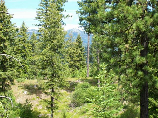 L15 B2 Coit Drive, Cascade, ID 83611 (MLS #527394) :: Boise River Realty