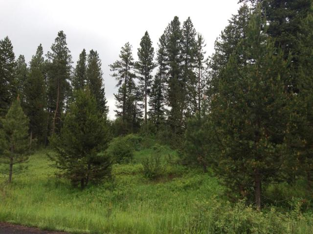 269 Barker Lane, Donnelly, ID 83615 (MLS #527406) :: Juniper Realty Group