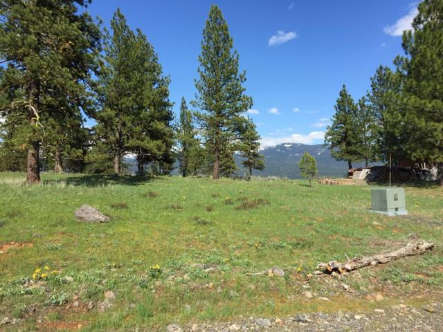 O NW Syringa Drive, New Meadows, ID 83654 (MLS #527449) :: Juniper Realty Group