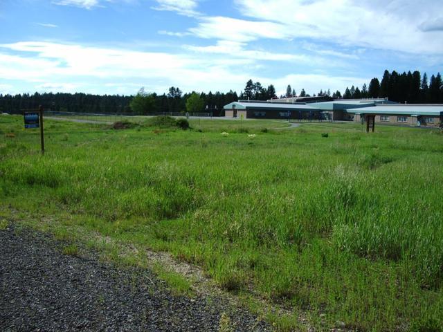 615 Fox  Ridge Lane, McCall, ID 83638 (MLS #527474) :: Juniper Realty Group
