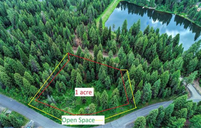 107 Eagle Shores Court, McCall, ID 83638 (MLS #527537) :: Juniper Realty Group