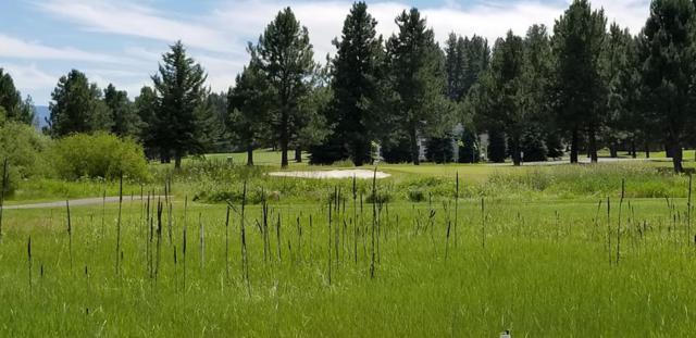Lot 22 Village Loop, New Meadows, ID 83654 (MLS #527549) :: Juniper Realty Group