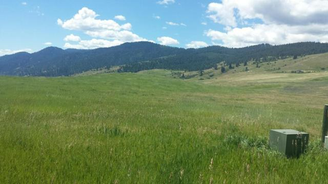 Lot 47 Whitewater Wilderness Drive, Pollock, ID 83547 (MLS #527567) :: Juniper Realty Group