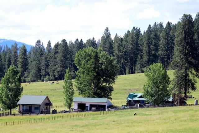 4220 Hwy 95, New Meadows, ID 83654 (MLS #527649) :: Juniper Realty Group