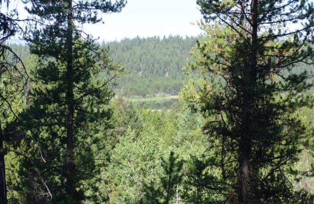 L1 Pointes Road, Cascade, ID 83611 (MLS #527721) :: Juniper Realty Group