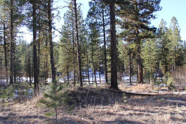 Lot 2 Timber Ridge Drive, New Meadows, ID 83654 (MLS #527735) :: Juniper Realty Group