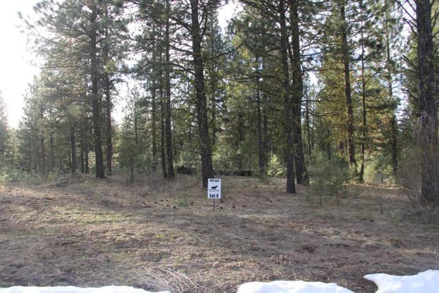 Lot 8 Timber Ridge Drive, New Meadows, ID 83654 (MLS #527738) :: Juniper Realty Group