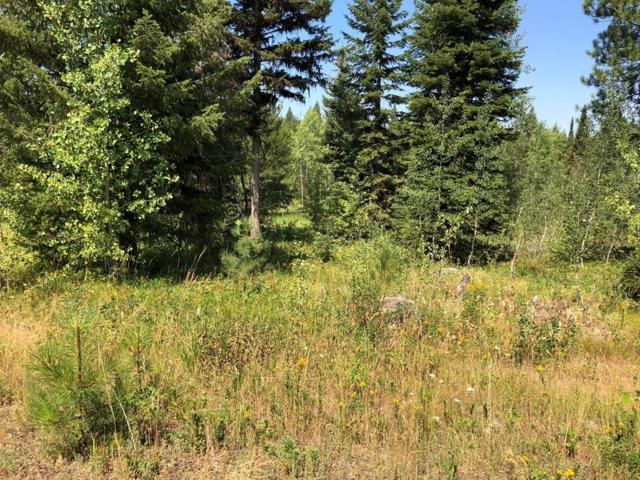 TBD Sundance Drive, McCall, ID 83638 (MLS #527782) :: Juniper Realty Group