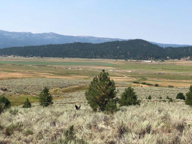 9 San Ignacio Way, Cascade, ID 83611 (MLS #527787) :: Juniper Realty Group
