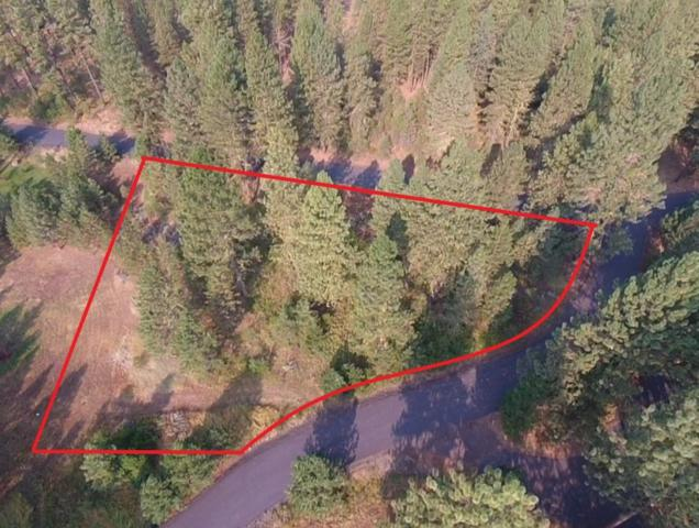 Lot 1 Valley View Drive, New Meadows, ID 83654 (MLS #527826) :: Juniper Realty Group
