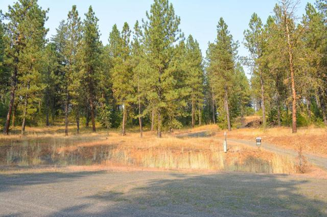 Lot 24 Kimberland Drive, New Meadows, ID 83638 (MLS #527849) :: Juniper Realty Group