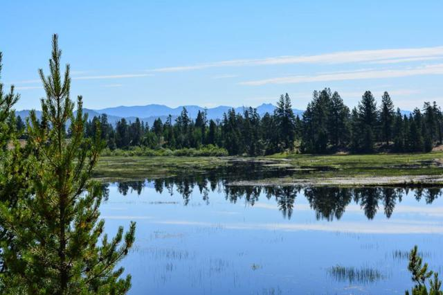 PARCEL 8 Norwood Road, Donnelly, ID 83615 (MLS #527919) :: Juniper Realty Group