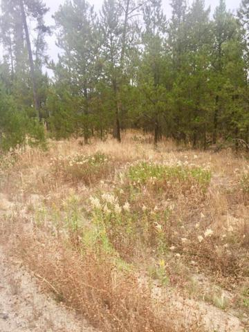 12754 Skain Road, Donnelly, ID 83615 (MLS #527977) :: Juniper Realty Group