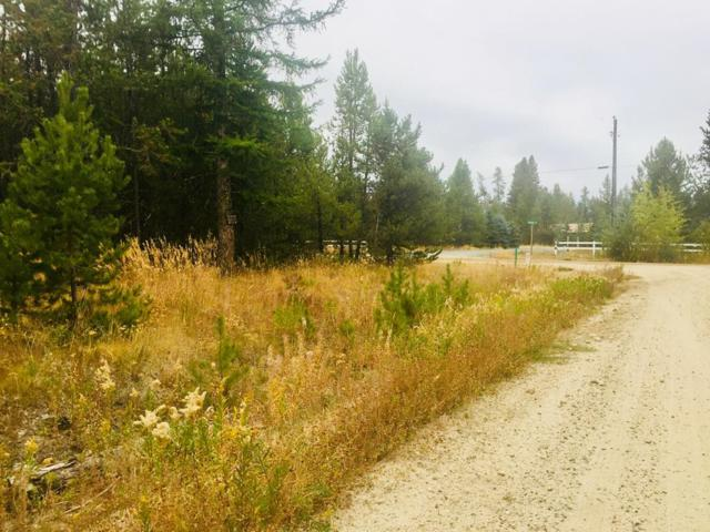 TBD Skain Road, Donnelly, ID 83615 (MLS #527978) :: Juniper Realty Group