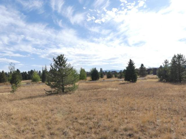 955 Valley View Lane, McCall, ID 83638 (MLS #527981) :: Juniper Realty Group