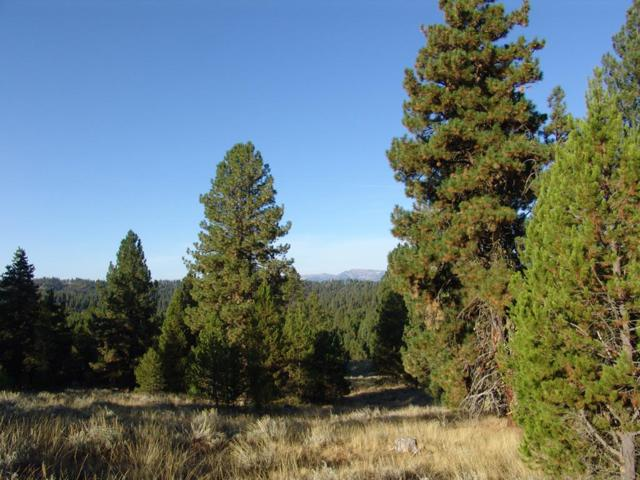 P11 Pointes Road, Cascade, ID 83611 (MLS #527985) :: Juniper Realty Group