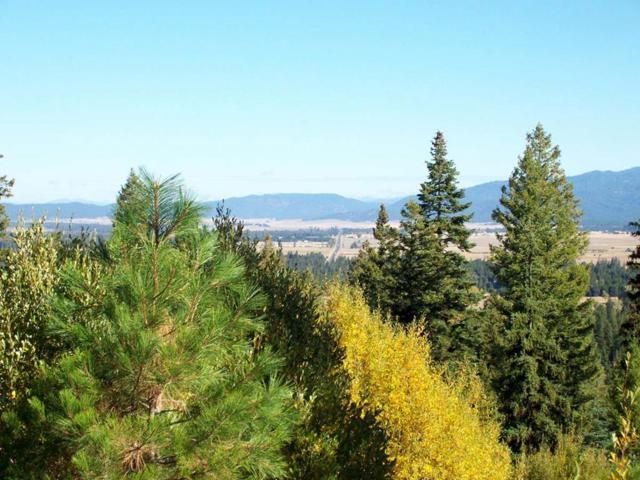 L16 Urban Lane, Cascade, ID 83611 (MLS #527998) :: Juniper Realty Group