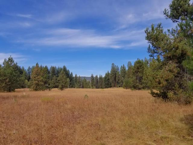 TBD Moon Drive, McCall, ID 83638 (MLS #528000) :: Juniper Realty Group