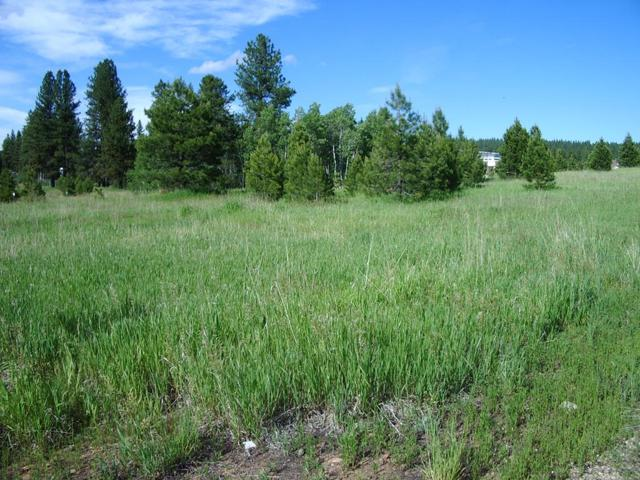 180 Fox  Ridge Lane, McCall, ID 83638 (MLS #528004) :: Juniper Realty Group