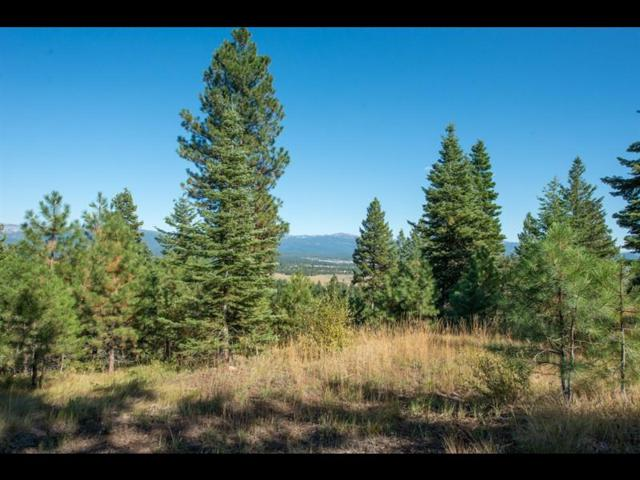 5623 Appaloosa Trail, McCall, ID 83638 (MLS #528035) :: Boise River Realty