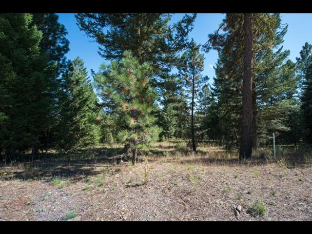 5545 Lupine Lane, McCall, ID 83638 (MLS #528036) :: Boise River Realty