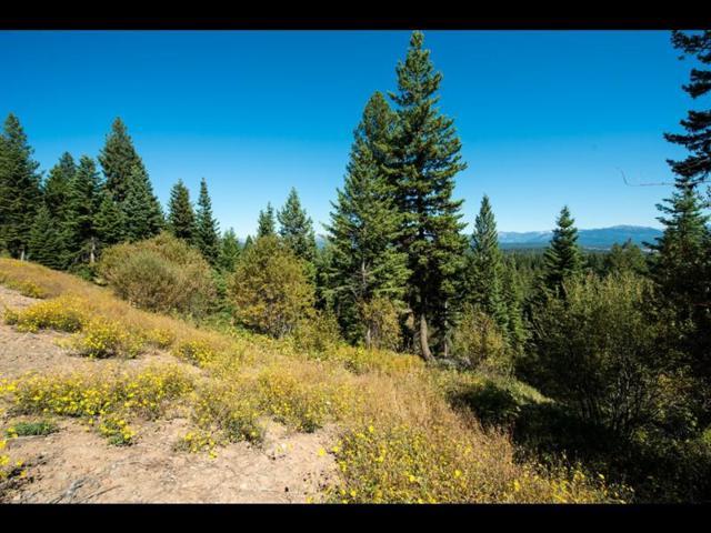 5509 Lupine Lane, McCall, ID 83638 (MLS #528039) :: Boise River Realty