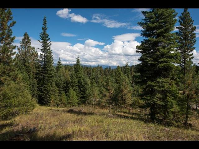 4320 Song Sparrow Drive, McCall, ID 83638 (MLS #528042) :: Juniper Realty Group