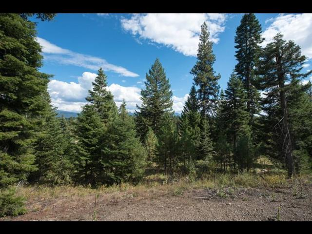 4312 Song Sparrow Drive, McCall, ID 83638 (MLS #528045) :: Juniper Realty Group