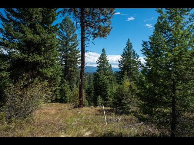 4345 Song Sparrow Drive, McCall, ID 83638 (MLS #528046) :: Silvercreek Realty Group