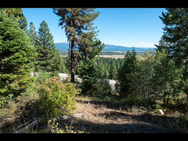 548 Osprey View Drive, McCall, ID 83638 (MLS #528047) :: Juniper Realty Group