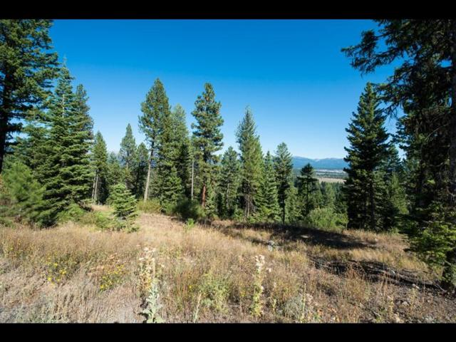 611 Lichen Lane, McCall, ID 83638 (MLS #528048) :: Juniper Realty Group