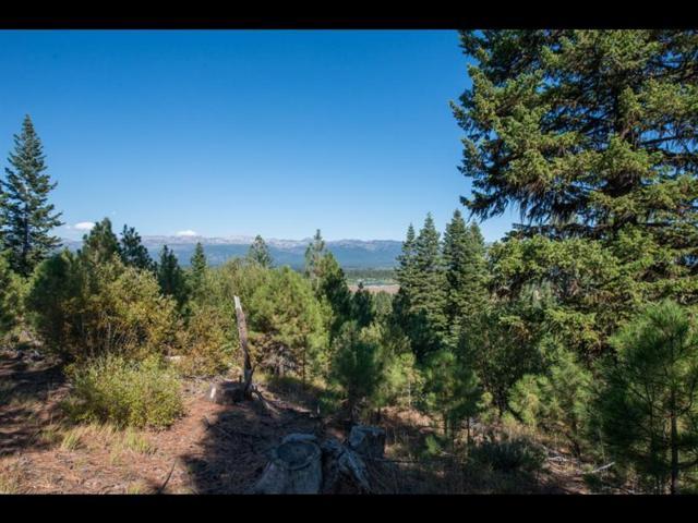 5617 Appaloosa Trail, McCall, ID 83638 (MLS #528051) :: Silvercreek Realty Group